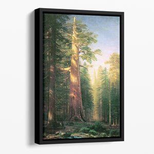 The big trees Mariposa Grove California by Bierstadt Floating Framed Canvas - Canvas Art Rocks - 1