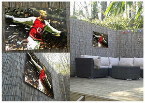 Thierry Henry Metal Print - Canvas Art Rocks - 2