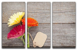 Three colorful gerbera flowers 3 Split Panel Canvas Print - Canvas Art Rocks - 1