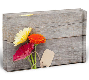 Three colorful gerbera flowers Acrylic Block - Canvas Art Rocks - 1