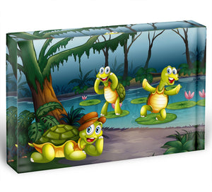 Three turtles living in the pond Acrylic Block - Canvas Art Rocks - 1