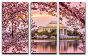 Tidal Basin and Jefferson Memorial cherry blossom season 3 Split Panel Canvas Print - Canvas Art Rocks - 1