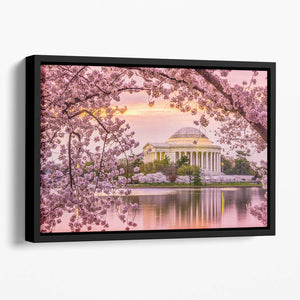 Tidal Basin and Jefferson Memorial cherry blossom season Floating Framed Canvas