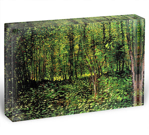 Trees and Undergrowth 2 by Van Gogh Acrylic Block - Canvas Art Rocks - 1