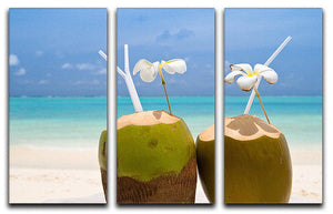Tropical Coconut Cocktail 3 Split Panel Canvas Print - Canvas Art Rocks - 1