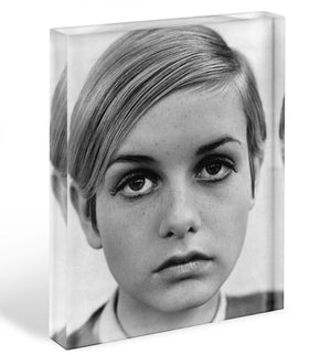 Twiggy Acrylic Block - Canvas Art Rocks - 1