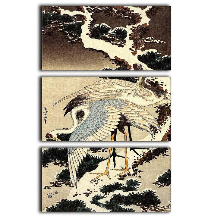 Two cranes on a pine covered with snow by Hokusai 3 Split Panel Canvas Print