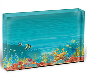 Underwater seascape Acrylic Block - Canvas Art Rocks - 1