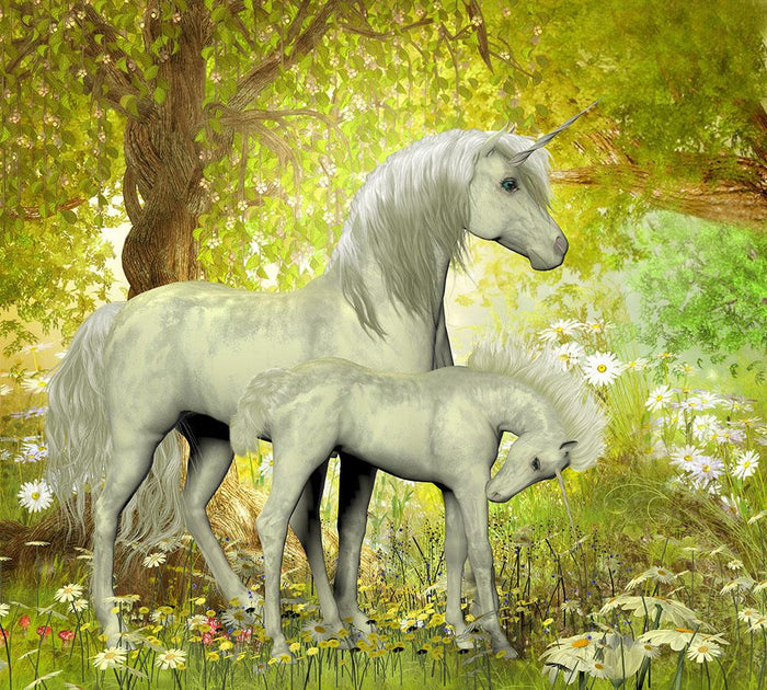 Unicorns and White Daisies Wall Mural Wallpaper