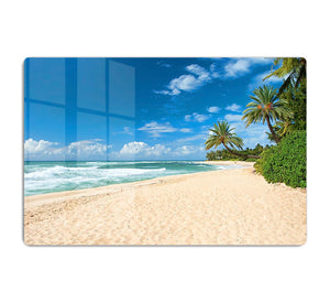 Untouched sandy beach with palms trees HD Metal Print - Canvas Art Rocks - 1