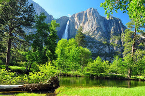 Upper Yosemite Falls Wall Mural Wallpaper - Canvas Art Rocks - 1