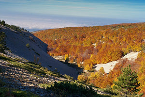 View from the Mount Ventoux Wall Mural Wallpaper - Canvas Art Rocks - 1
