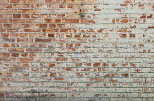 Vintage dirty brick wall Wall Mural Wallpaper - Canvas Art Rocks - 1