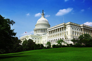 Washington DC Capitol from side Wall Mural Wallpaper - Canvas Art Rocks - 1