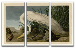 White Heron by Audubon 3 Split Panel Canvas Print - Canvas Art Rocks - 1