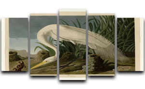White Heron by Audubon 5 Split Panel Canvas - Canvas Art Rocks - 1