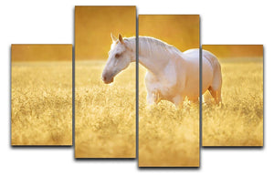 White Orlov trotter horse in rye 4 Split Panel Canvas - Canvas Art Rocks - 1