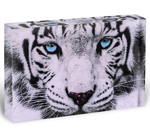 White Tiger Face Acrylic Block - Canvas Art Rocks - 1