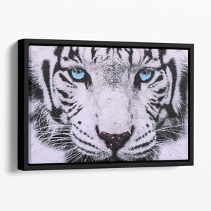 White Tiger Face Floating Framed Canvas - Canvas Art Rocks - 1