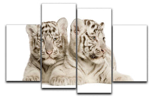 White Tiger cubs 4 Split Panel Canvas - Canvas Art Rocks - 1