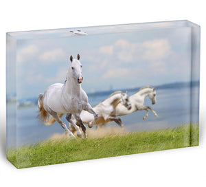White horses running near water Acrylic Block - Canvas Art Rocks - 1