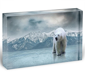 White polar bear on the ice Acrylic Block - Canvas Art Rocks - 1