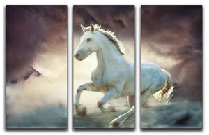 White running horse 3 Split Panel Canvas Print - Canvas Art Rocks - 1