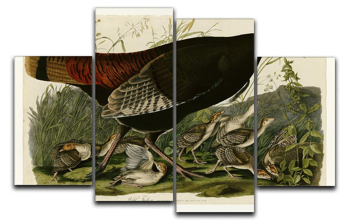 Wild Turkey 2 by Audubon 4 Split Panel Canvas