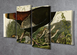 Wild Turkey 2 by Audubon 4 Split Panel Canvas - Canvas Art Rocks - 2