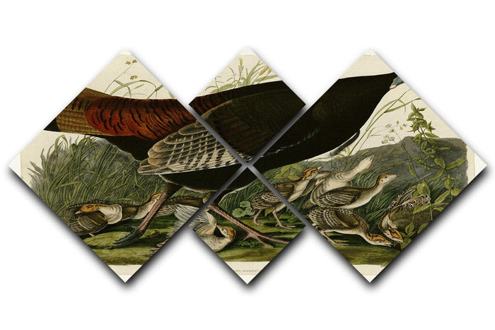Wild Turkey 2 by Audubon 4 Square Multi Panel Canvas
