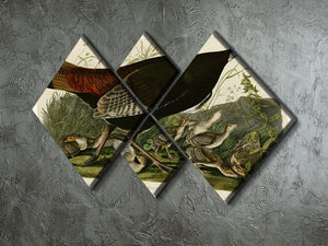 Wild Turkey 2 by Audubon 4 Square Multi Panel Canvas - Canvas Art Rocks - 2