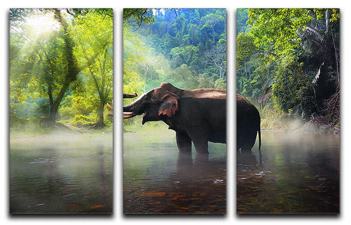 Wild elephant in the beautiful forest 3 Split Panel Canvas Print