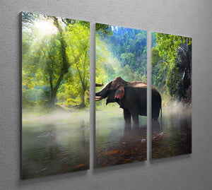 Wild elephant in the beautiful forest 3 Split Panel Canvas Print - Canvas Art Rocks - 2