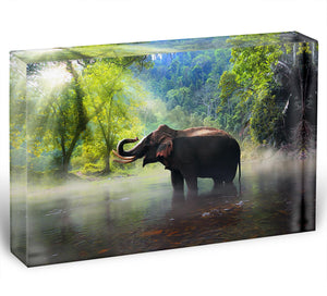 Wild elephant in the beautiful forest Acrylic Block - Canvas Art Rocks - 1