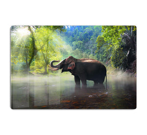 Wild elephant in the beautiful forest HD Metal Print - Canvas Art Rocks - 1