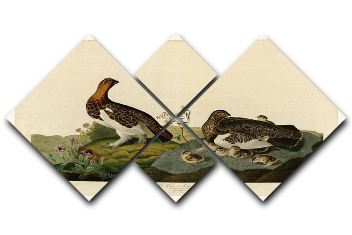 Willow Grouse by Audubon 4 Square Multi Panel Canvas