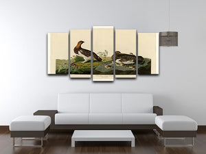 Willow Grouse by Audubon 5 Split Panel Canvas - Canvas Art Rocks - 3