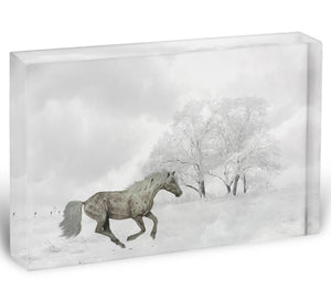 Winter Horse Acrylic Block - Canvas Art Rocks - 1