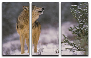 Wolf Howling in Snow 3 Split Panel Canvas Print - Canvas Art Rocks - 1