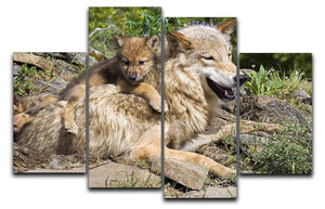 Wolf cubs and mother at den site 4 Split Panel Canvas - Canvas Art Rocks - 1