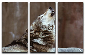 Wolves howl in Moscow Zoo 3 Split Panel Canvas Print - Canvas Art Rocks - 1