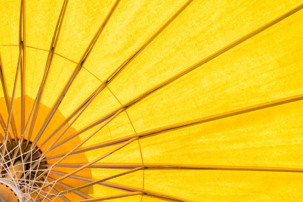 Yellow umbrella background Wall Mural Wallpaper | Canvas Art Rocks