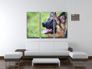 Young dog german shepherd on the grass in the park 3 Split Panel Canvas Print - Canvas Art Rocks - 3