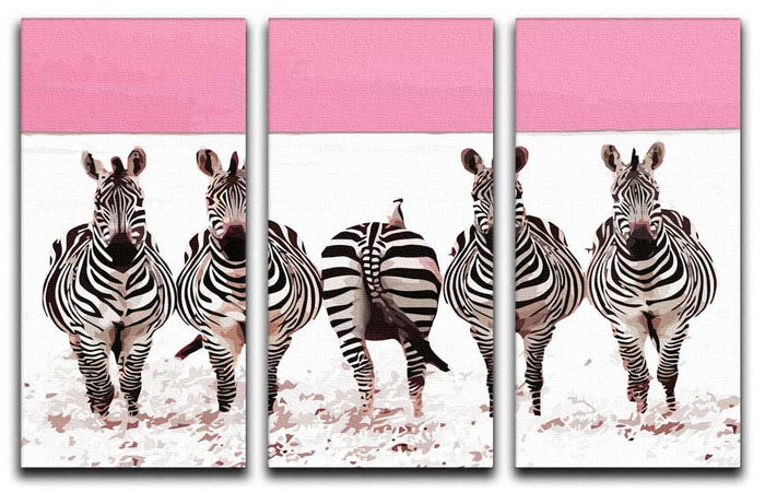 Funky Zebras 3 Split Canvas Print