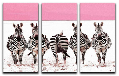 Funky Zebras 3 Split Canvas Print - They'll Love Wall Art