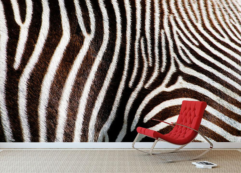 Zebra Fur Wall Mural Wallpaper - Canvas Art Rocks - 1