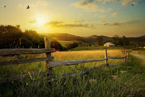 art rural landscape Wall Mural Wallpaper - Canvas Art Rocks - 1