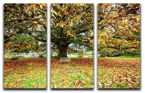 autumn leaves 3 Split Panel Canvas Print - Canvas Art Rocks - 1