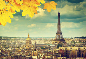 autumn leaves in Paris and Eiffel tower Wall Mural Wallpaper - Canvas Art Rocks - 1