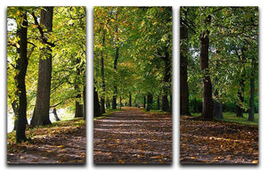 autumn road with leaves in park 3 Split Panel Canvas Print - Canvas Art Rocks - 1